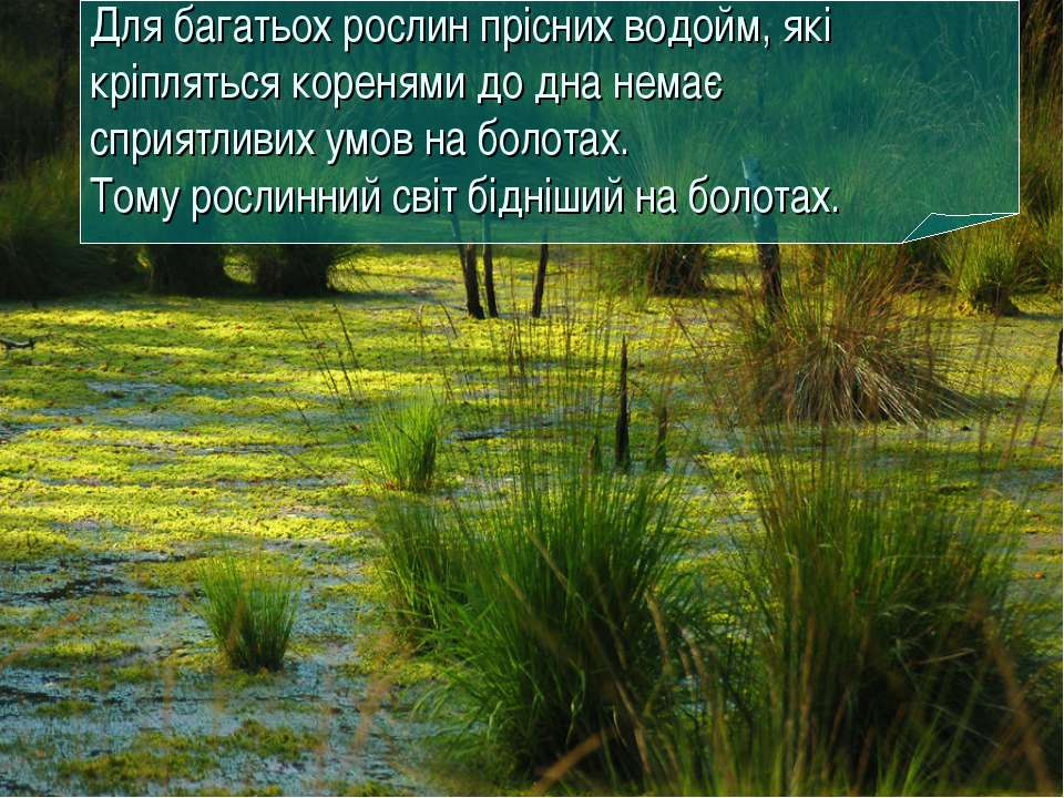 Для багатьох рослин прісних водойм, які кріпляться коренями до дна немає спри...