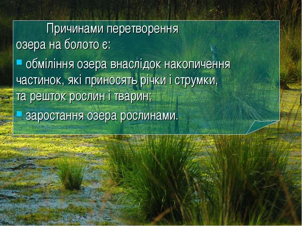 Причинами перетворення озера на болото є: обміління озера внаслідок накопичен...