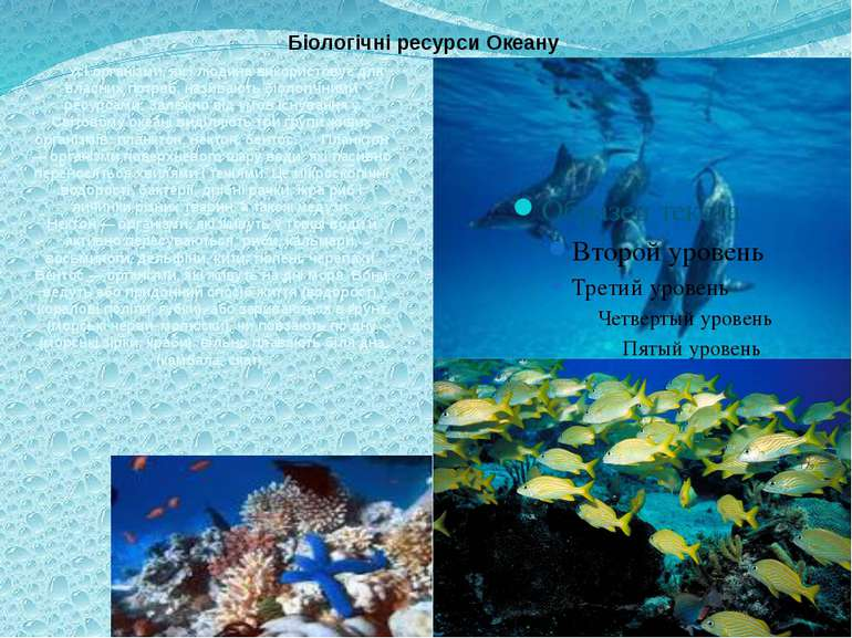 Біологічні ресурси Океану Усі організми, як і людина використовує для власних...