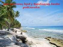 ріст тропічних дерев у Карибському басейні уповільнився.