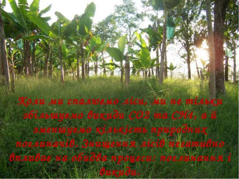 Коли ми спалюємо ліси, ми не тільки збільшуємо викиди СО2 та СН4, а й зменшує...