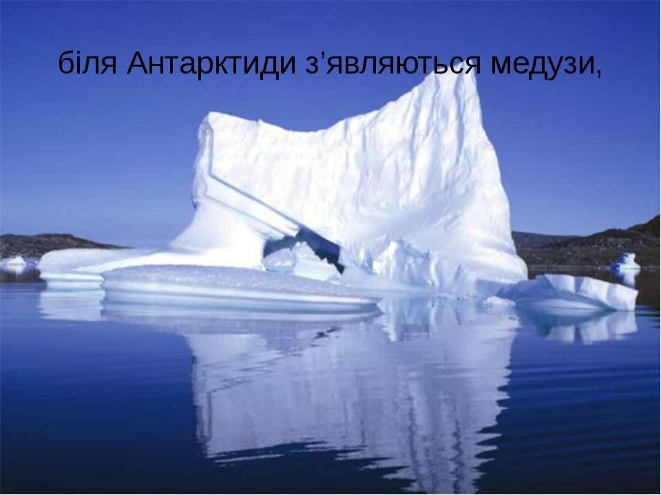 біля Антарктиди з'являються медузи,