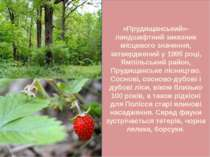 «Прудищанський»- ландшафтний заказник місцевого значення, затверджений у 1995...