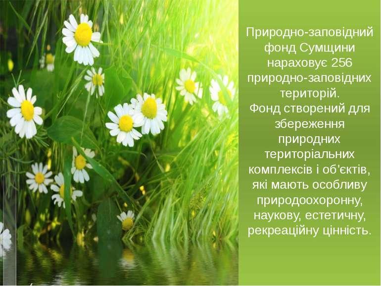 Природно-заповідний фонд Сумщини нараховує 256 природно-заповідних територій....
