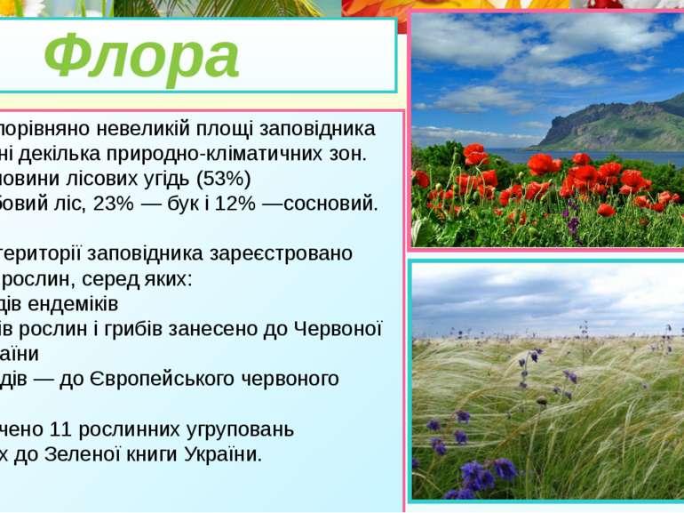 • На порівняно невеликій площі заповідника розташовані декілька природно-клім...