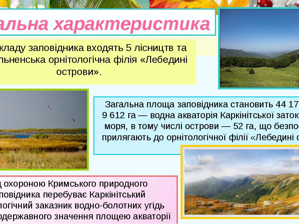До складу заповідника входять 5 лісництв та Роздольненська орнітологічна філі...