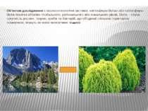 Об'єктом дослідження є еколого-геологічні системи: «літосфера-біота» або «літ...