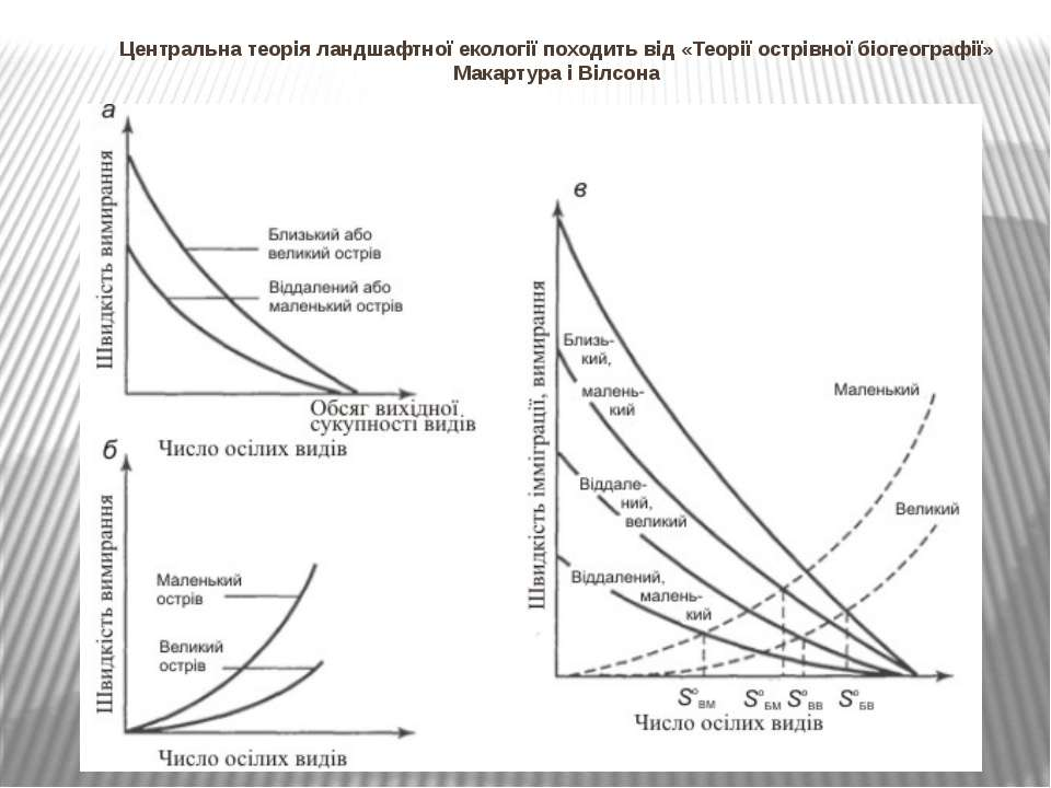 Центральна теорія ландшафтної екології походить від «Теорії острівної біогеог...