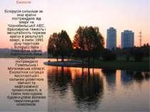 Екологія Білорусія сильніше за інші країни постраждала від аварії на Чорнобил...