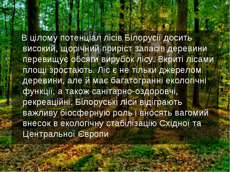 В цілому потенціал лісів Білорусії досить високий, щорічний приріст запасів д...