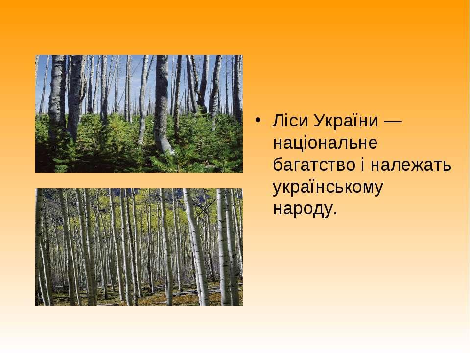 Ліси України — національне багатство і належать українському народу.