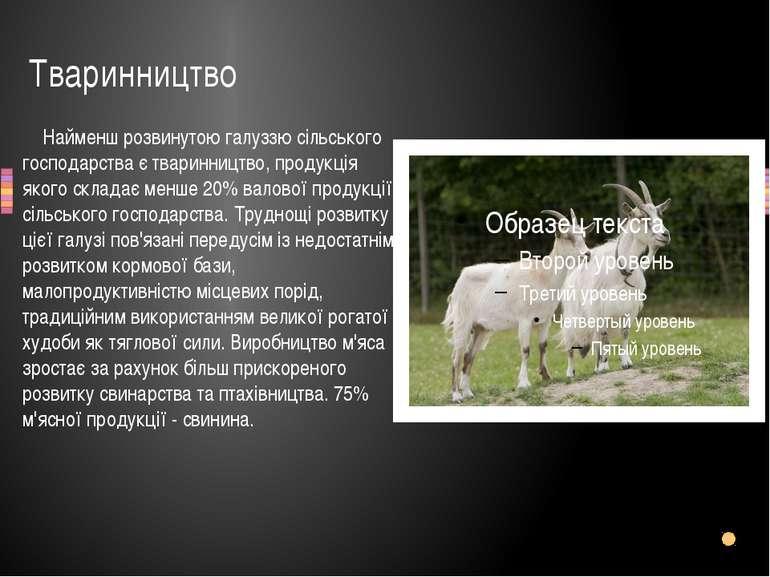 Тваринництво Найменш розвинутою галуззю сільського господарства є тваринництв...