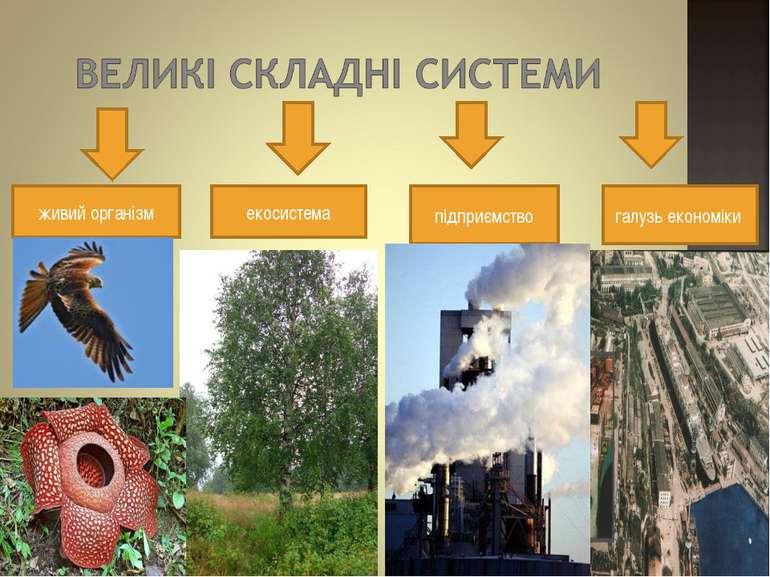 живий організм екосистема підприємство галузь економіки