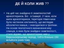 ДЕ Й КОЛИ ЖИВ?? На цей час знайдено 6 окам'янілостей археоптерикса. Всі - в ...