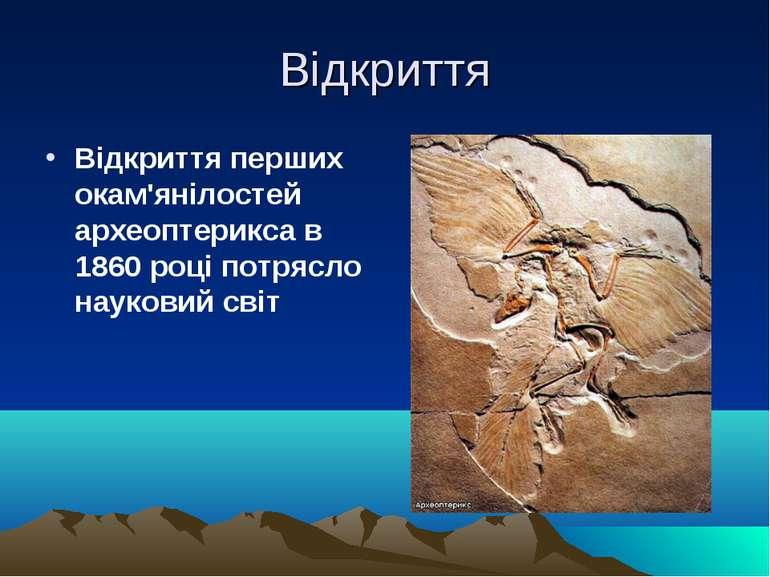 Відкриття Відкриття перших окам'янілостей археоптерикса в 1860 році потрясло ...