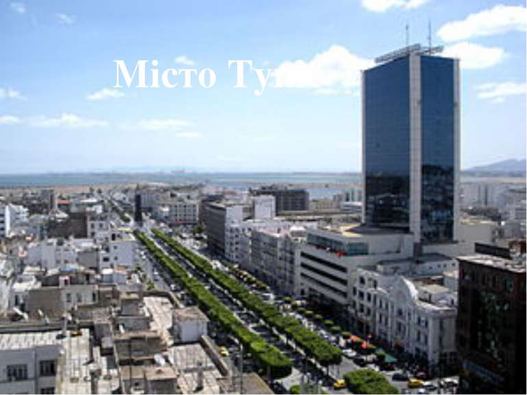 Місто Туніс