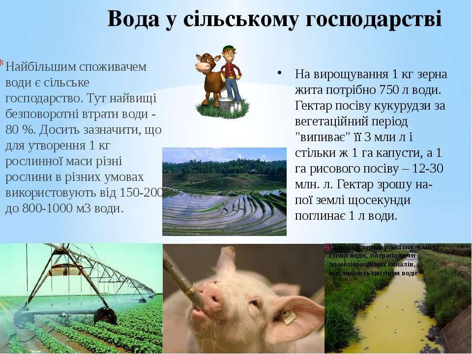 Вода у сільському господарстві Найбільшим споживачем води є сільське господар...