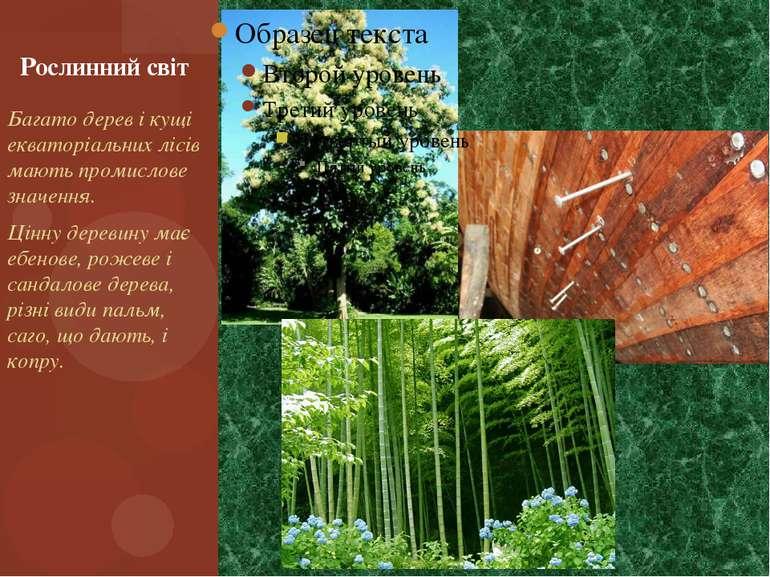 Багато дерев і кущі екваторіальних лісів мають промислове значення. Цінну дер...