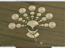 Звичайно, існує думка, що кола на полях є рукотворними і не мають відношення ...