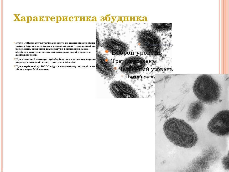 Характеристика збудника Вірус Orthopoxvirus variola входить до групи вірусів ...