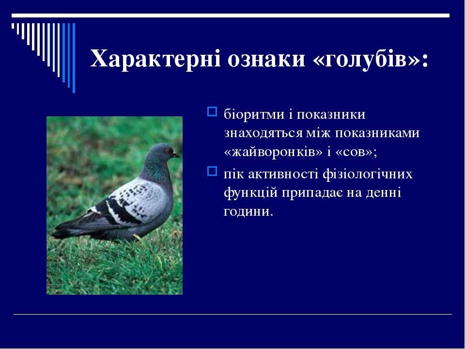 Характерні ознаки «голубів»: біоритми і показники знаходяться між показниками...