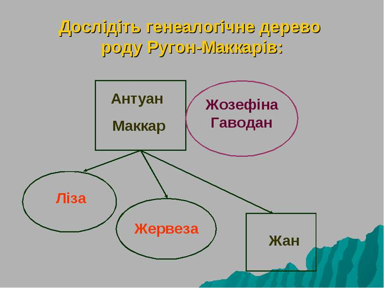 Дослідіть генеалогічне дерево роду Ругон-Маккарів: Антуан Маккар Жозефіна Гав...