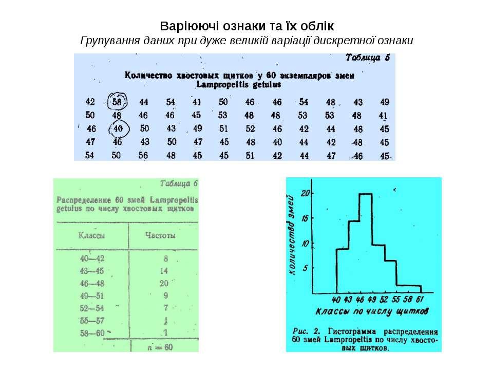 Варіюючі ознаки та їх облік Групування даних при дуже великій варіації дискре...