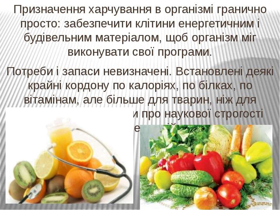 Призначення харчування в організмі гранично просто: забезпечити клітини енерг...