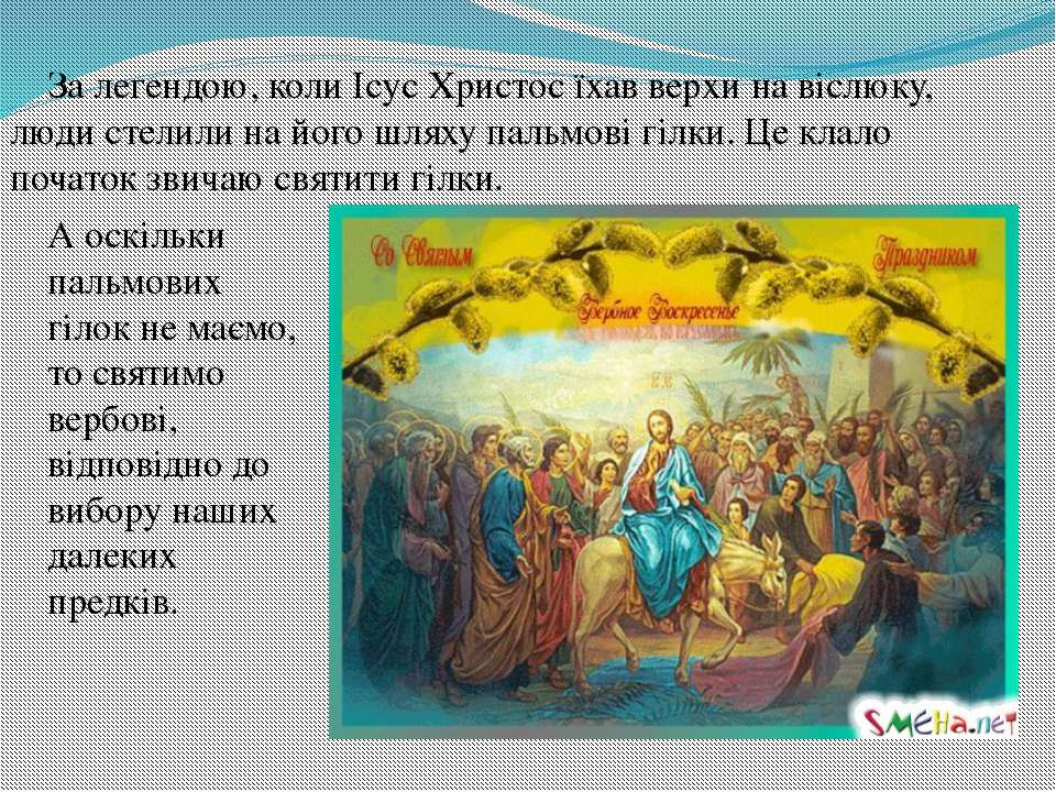 За легендою, коли Ісус Христос їхав верхи на віслюку, люди стелили на його шл...