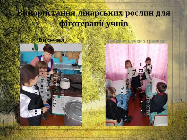 Використання лікарських рослин для фітотерапії учнів Фіто-чай Арома-мішечки з...