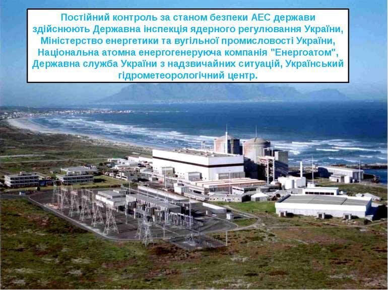 Постійний контроль за станом безпеки АЕС держави здійснюють Державна інспекці...