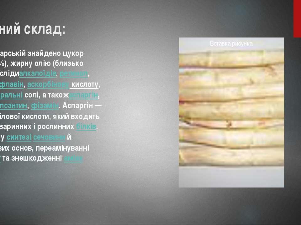 Хімічний склад: У спаржі лікарській знайдено цукор (близько 36%), жирну олію ...