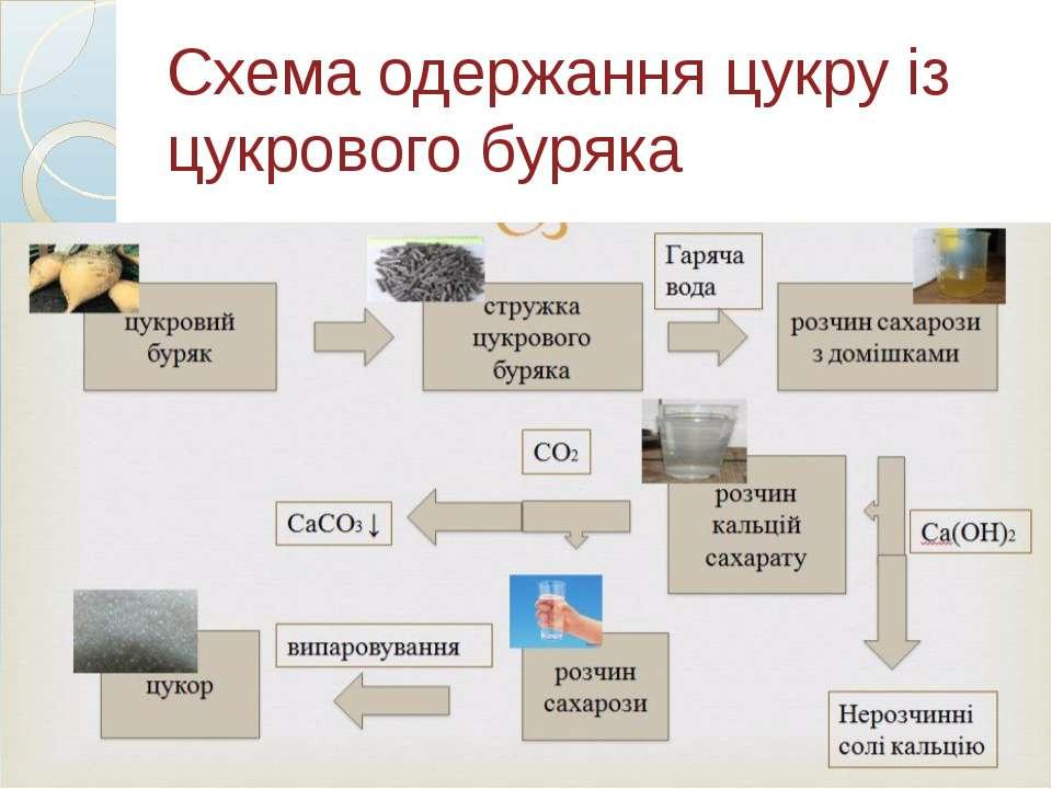 Схема одержання цукру із цукрового буряка