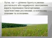 Лу ка, луг — ділянка ґрунту в умовах достатнього або надмірного зволоження, в...