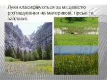 Луки класифікуються за місцевістю розташування на материкові, гірські та запл...