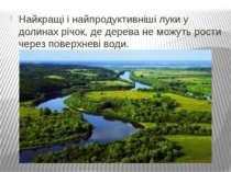 Найкращі і найпродуктивніші луки у долинах річок, де дерева не можуть рости ч...