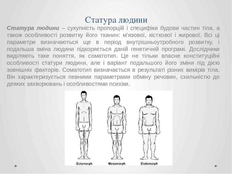 Статура людини – сукупність пропорцій і специфіки будови частин тіла, а також...