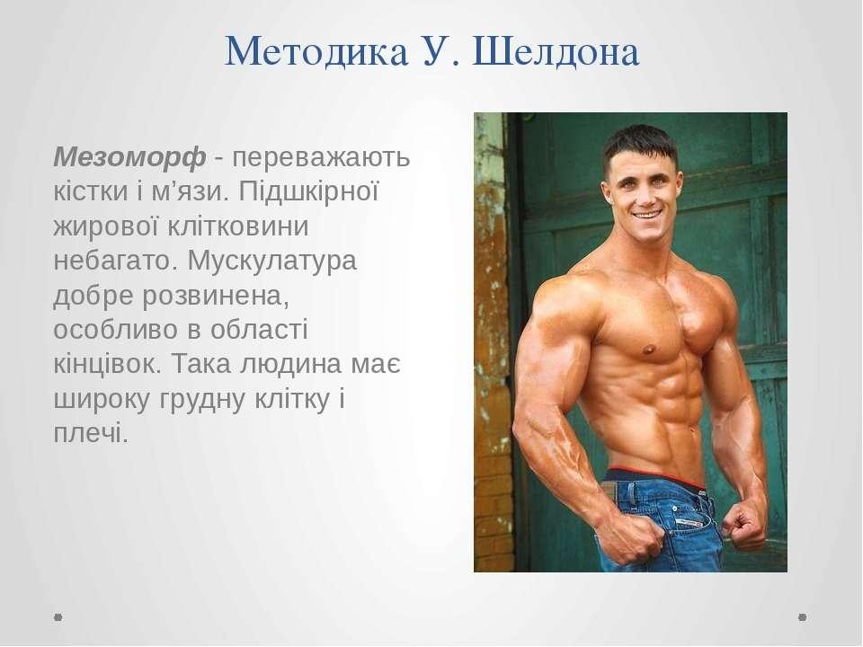Мезоморф - переважають кістки і м'язи. Підшкірної жирової клітковини небагато...