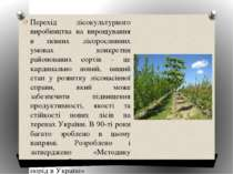Перехід лісокультурного виробництва на вирощування в певних лісорослинних умо...