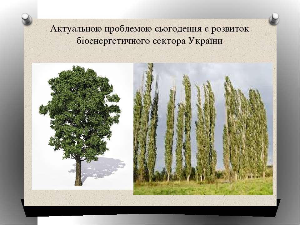 Актуальною проблемою сьогодення є розвиток біоенергетичного сектора України