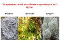 За формою слані лишайники поділяються на 3 групи: Накипні Листуваті Кущисті