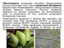 Застосовують ашерсонію способом обприскування рослин суспензією спор. Проти ц...