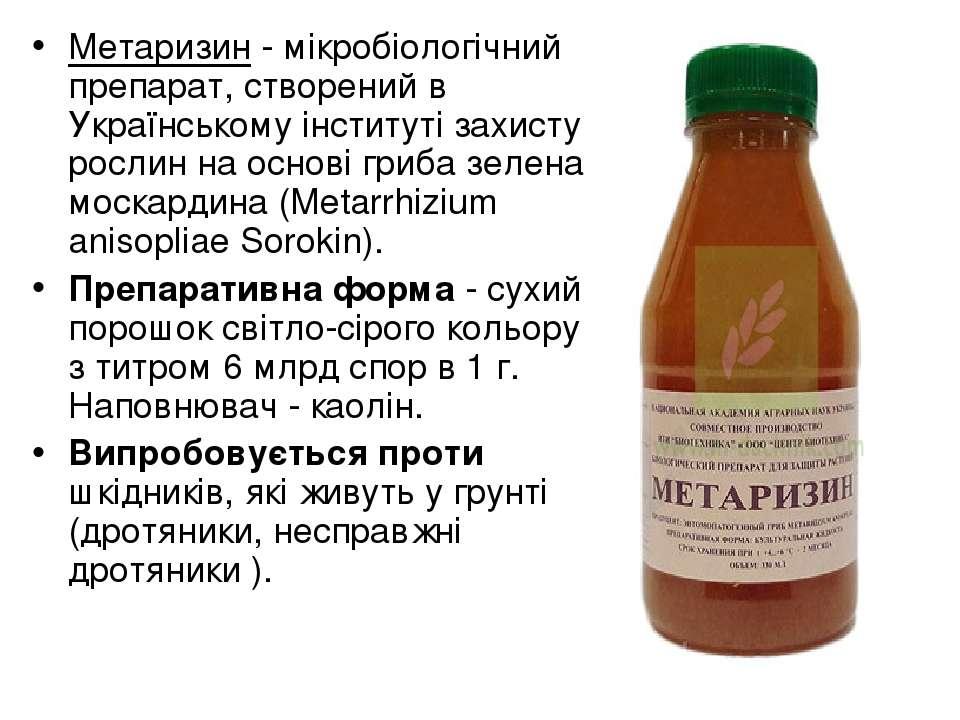 Метаризин - мікробіологічний препарат, створений в Українському інституті зах...