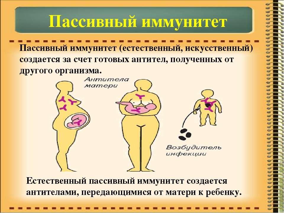 Пассивный иммунитет Пассивный иммунитет (естественный, искусственный) создает...