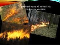 Природні пожежі лісових та торф'яних масивів;