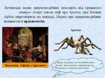 Латинська назва павукоподібних походить від грецького ἀράχνη«павук» (існує т...