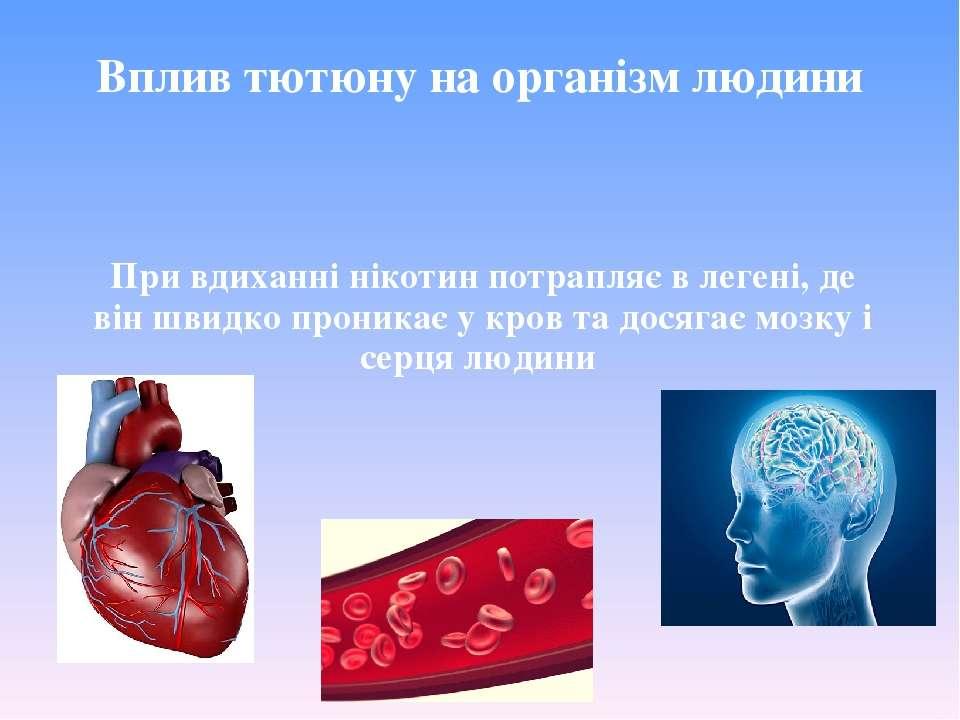 Вплив тютюну на організм людини При вдиханні нікотин потрапляє в легені, де в...