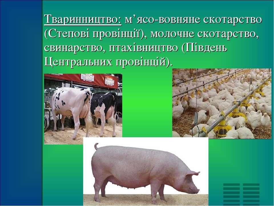 Тваринництво: м'ясо-вовняне скотарство (Степові провінції), молочне скотарств...