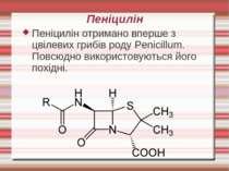 Пеніцилін Пеніцилін отримано вперше з цвілевих грибів роду Penicillum. Повсюд...