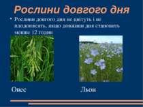 Рослини довгого дня Рослини довгого дня не цвітуть і не плодонясять, якщо дов...